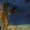 Экскурсия Харьков — Полтава — Диканька — Опошня — Гоголево #1350589