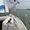 Обучение управлению парусной яхтой #1488083