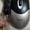 Мышь Gembird MUSOPTI5-USB #1637700