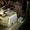 Круглошлифовальный полуавтомат 3А161 - Изображение #5, Объявление #1675070
