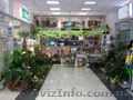 Торговый центр с участком. - Изображение #5, Объявление #226112