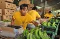 фрукты бананы оптом - Изображение #4, Объявление #461566