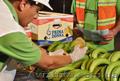 оптовые поставки бананов из эквадора - Изображение #3, Объявление #461570