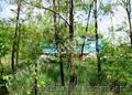 Участок 48 соток, красная линия трассы, 10 км от Харькова. - Изображение #4, Объявление #745262