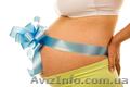 Обучающий курс для беременных!