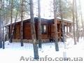Деревяный дом в сосновом лесу. с. Революционное., Объявление #1038355