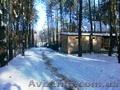 Деревяный дом в сосновом лесу. с. Революционное. - Изображение #2, Объявление #1038355