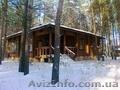 Деревяный дом в сосновом лесу. с. Революционное. - Изображение #3, Объявление #1038355