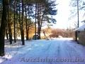 Деревяный дом в сосновом лесу. с. Революционное. - Изображение #5, Объявление #1038355
