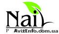 Материалы для наращивания ногтей интернет магазин