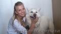 Ветеринар в Харькове на дом