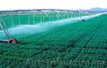 Монтаж трубопроводов сельхозназначения  - Изображение #3, Объявление #1417924