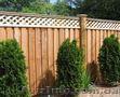 Строительство заборов из дерева - Изображение #3, Объявление #1571762