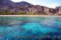 Яркий отдых на Красном море Эйлата - 830$ - Изображение #4, Объявление #1576277
