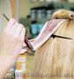 Курс колористки для парикмахеров Кацарской 3 Обучение моделях. Звоните