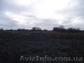 Срочно продам дом в Змиевском р-н можно под дачу - Изображение #5, Объявление #1602973
