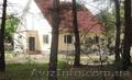 Продам дом в экологическом месте в с. Артюховка, Объявление #1630503