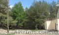 Продам дом в экологическом месте в с. Артюховка - Изображение #3, Объявление #1630503