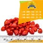 Семена кукурузы / Насіння кукурудзи Оржиця 237 МВ від ПБФ «Колос» - Изображение #2, Объявление #1588894