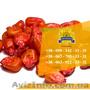 Семена кукурузы / Насіння кукурудзи Оржиця 237 МВ від ПБФ «Колос», Объявление #1588894