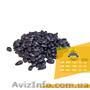 Семена подсолнечника / Рекольд - насіння соняшника - Изображение #2, Объявление #1588893