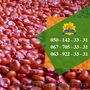 Насіння від виробника: пшениця, соняшник, кукурудза - Изображение #3, Объявление #1588896