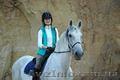 Конные прогулки Харьков,  прокат лошадей,  катание на лошадях Харьков