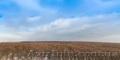 Квартира в Новострое с Панорамой на Лес. Мечта или Реальность?!