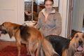 Вязка собак + искусственное оплодотворение. Мелкие и крупные породы.,  Харьков